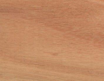 wood-eucalyptus